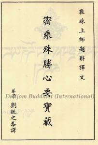 13 HH Dudjom Rinpoche's Naming of the Book on Silas (in Chinese)