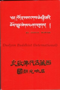 Book Cover of History of Nyingmapa (Chi)-small