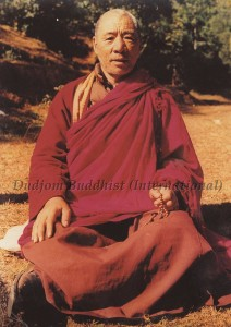 HH Kyabje Chadral Rinpoche in the forest