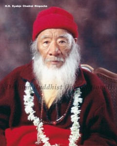 HH Kyabje Chadral Rinpoche's 100th Birthday (2012)