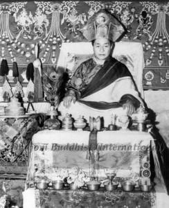 HH Kyabje Dudjom Rinpoche25