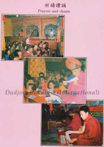 Ven. Guru Lau Led His Disciples for Sadhana Practices
